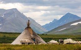 Chooms van Khanty-rendier herde stock foto's