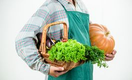 Choose a healthy lifestyle. Holding basket. seasonal vitamin food. Useful fruit and vegetable. man chef with rich autumn. Crop. harvest festival. man farmer royalty free stock photography