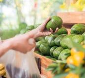 Choosing avocados. Hand of customer choosing avocados at the supermarket, selective focus Royalty Free Stock Image