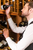 Choosing the best wine. Royalty Free Stock Photo
