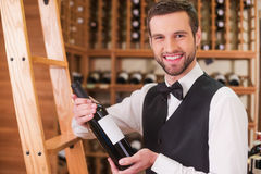 Choosing the best wine for you. Stock Photos