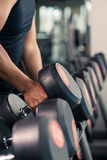 Choosing dumbbells Stock Photography