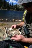 Choosing fishing fly Royalty Free Stock Photo