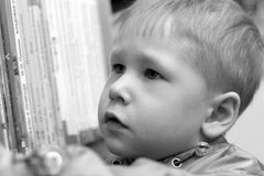 Choosing a library book. Cute little boy selecting a library book Royalty Free Stock Images
