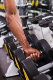 Choosing weights. Stock Photos