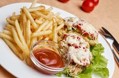 Chop cheese and tomatoes with French fries. Close-up of fried pork with onions, tomatoes and cheese. Copy space Stock Photography