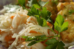 Chop and sauerkraut Royalty Free Stock Photography