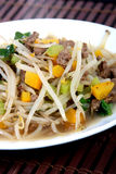 Chop suey close-up Royalty Free Stock Images