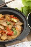 Chop suey da carne de porco fotos de stock royalty free