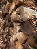 Choped wood. A pile of choped wood Royalty Free Stock Photos