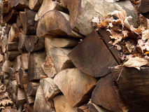 Choped wood. A pile of choped wood Royalty Free Stock Images