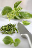 Chopped basil and knife Stock Images