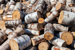 Chopped birch firewood logs in pile. Nature background Royalty Free Stock Image