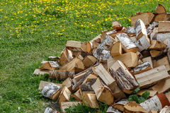 Chopped birch wood on the green grass. Summer day Royalty Free Stock Images