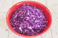 Chopped cabbage Royalty Free Stock Image