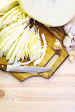 Chopped cabbage Stock Image
