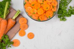 Chopped carrot slices. Fresh raw peeled carrot slice in bowl. Chopped carrot slices. Fresh raw peeled carrot slice in bowl Stock Photos