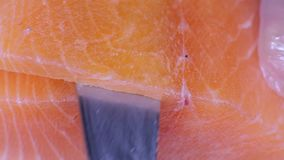 Chopped chilled salmon stock video footage