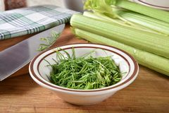 Chopped chives and celery stock images