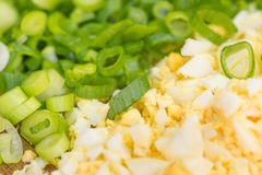 Chopped chives and eggs Stock Photos