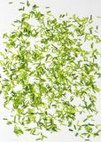 Chopped chives Stock Image