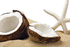 Chopped coconut in the sand Stock Image