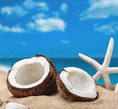 Chopped coconut on sea beach background Royalty Free Stock Photography