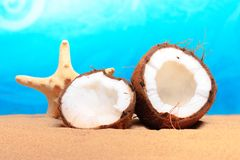 Chopped coconut on sea-beach background Stock Photo