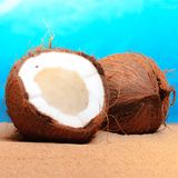 Chopped coconut on sea-beach background Royalty Free Stock Photography