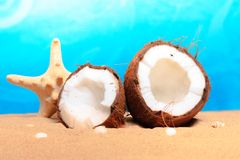 Chopped coconut on sea-beach background Stock Image