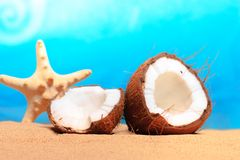 Chopped coconut on sea-beach background Stock Photography