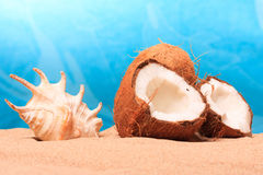 Chopped coconut on sea-beach background Royalty Free Stock Image