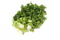Chopped coriander isolated on white background stock images