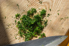 Chopped dill on the wood board. Royalty Free Stock Images