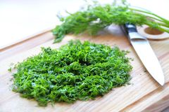 Chopped dill Royalty Free Stock Images