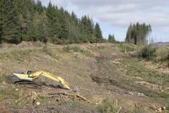 Chopped empilhou os logs de madeira para o escavador do combust?vel e do trator na floresta imagens de stock royalty free