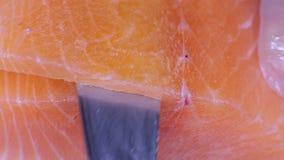 Chopped enfrió salmones almacen de metraje de vídeo