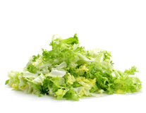 Chopped escarole endive Royalty Free Stock Image