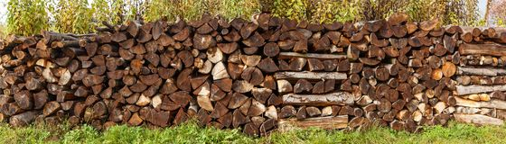 Fire woods background. Stock Images