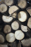 Chopped firewood for house fireplace Stock Photo