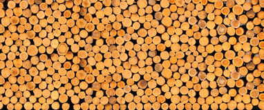 Chopped firewood logs Royalty Free Stock Image