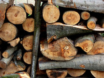 Chopped firewood logs in a pile Stock Image