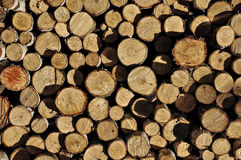 Chopped Firewood. Natural Background Pattern Stock Image