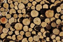 Chopped firewood. Natural background pattern Stock Image