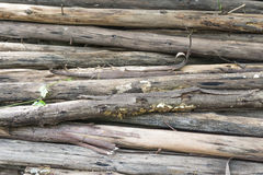 Chopped firewood on a stack Royalty Free Stock Images