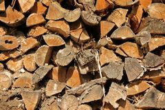 Chopped firewoods stacked in rows Stock Images