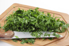Chopped flat leaf parsley side view Royalty Free Stock Photos