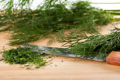 Chopped fresh dill Royalty Free Stock Photography