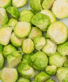 Green Brussel Sprouts. Chopped Green Brussel Sprouts Texture Closeup. Cabbage Background Top View Royalty Free Stock Photography