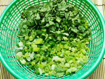Chopped green onion and coriander. In basket royalty free stock images